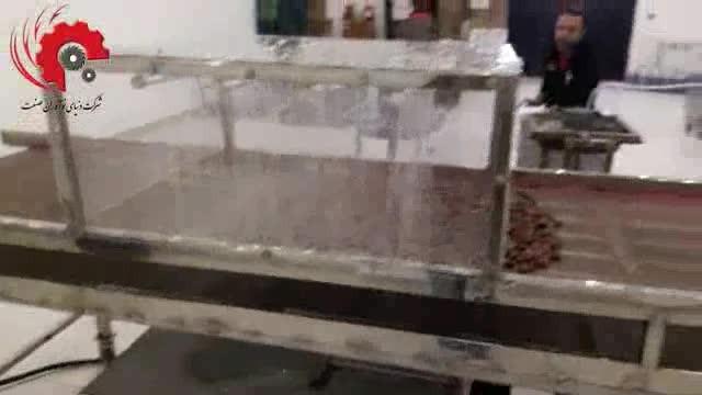 دستگاه شستشو و خشک کن خرما
